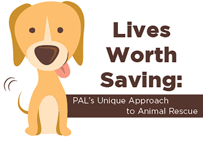 PALS Animal Rescue 1