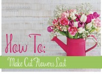 How To Make Cut Flowers Last Twice as Long