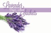Lavender Dryer Sheet Sachets