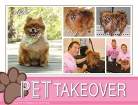 Pet Takeover - May 2017