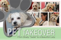 Pet Makeover - May 2015