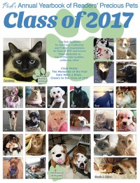 Pink's Annual Pet Yearbook